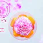 """さくら風味のエスプーマクリームがキメ手♡"""" 春のさくらパフェ""""アンド・オール上野アメ横店にて発売♪"""