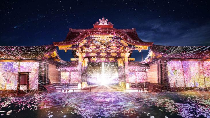 美しく彩られる元離宮二条城を見に行こう!NAKEDが手がける『FLOWERS BY NAKED 2020 −桜− 世界遺産・二条城』3/20より開催