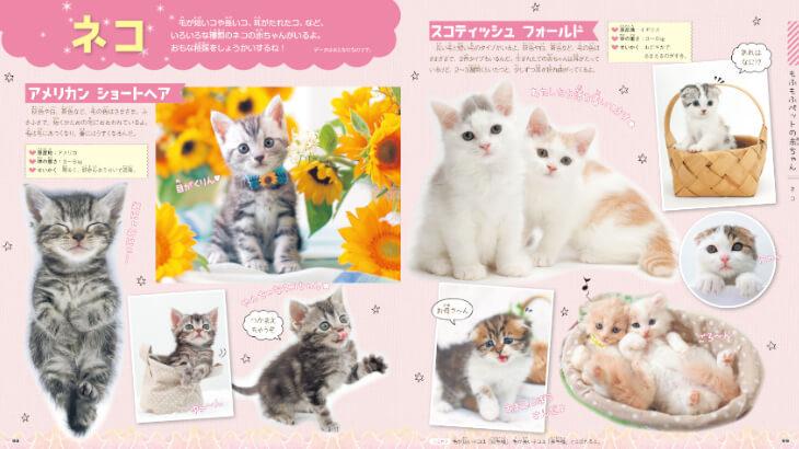 もふもふな動物の赤ちゃんがいっぱい♡大人も思わず夢中になっちゃうかわいすぎる学習図鑑が新発売!