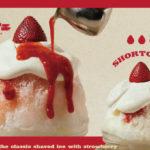 """まるでケーキのような贅沢かき氷が楽しめる♡""""かき氷パーラー フローチェル""""ルミネエスト新宿8Fに期間限定オープン"""
