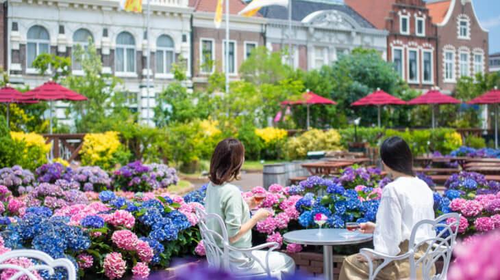 ハウステンボスの名を冠した品種が初登場!ハウステンボスにて日本最多1,250品種がヨーロッパの街並みを彩る『あじさい祭』5/29より開催