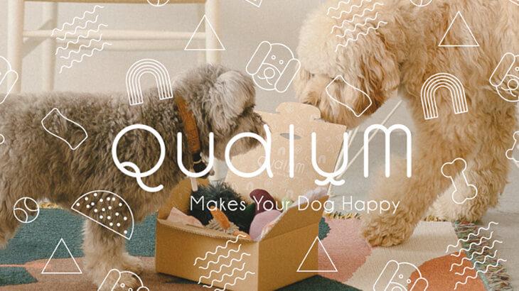 ワンちゃんにも毎月の楽しみを!犬のためのサブスクボックスサービス『Qualum(カルム)』がスタート♪