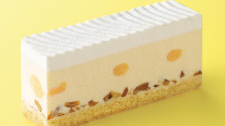 エクセルシオール カフェから健康志向の方にオススメの『プロテインミルクスムージー』や『糖質50%オフ レアチーズケーキ』が発売