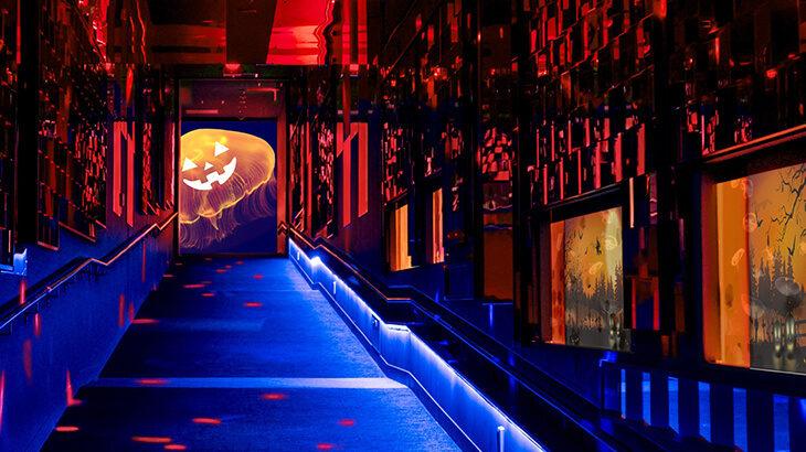 【10/1〜10/31】すみだ水族館がちょっとミステリアスな雰囲気に?ハロウィン気分を味わえるイベント『ハロウィン in すみだ水族館』開催